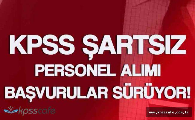 Başbakanlık YTB KPSS Şartsız Personel Alımı (Başvurular 26 Mayıs'a Kadar Devam Edecek)
