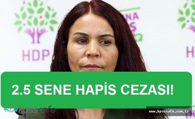 Tutuklu HDP Milletvekili Konca'ya 2.5 Sene Hapis Kararı!