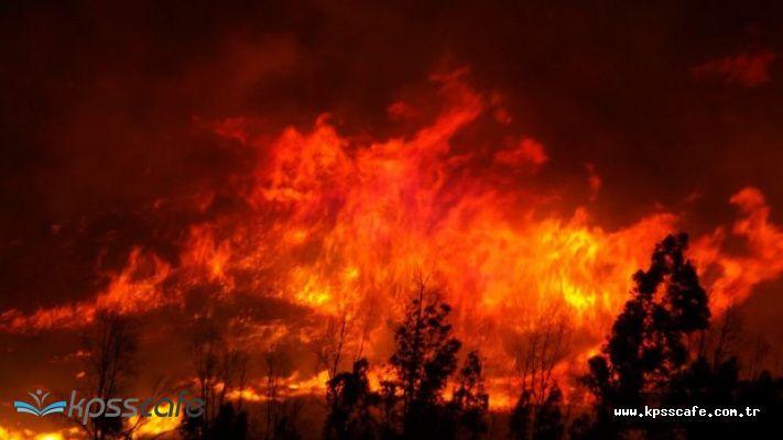 İstanbul'da AVM'de Yangın Çıktı! Vatandaşlar Korku Dolu Anlar Yaşadı