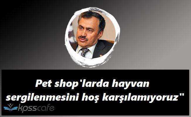 Orman Bakanı'ndan İyi Haber! Pet Shoplarda Hayvan Satışı Bitiyor