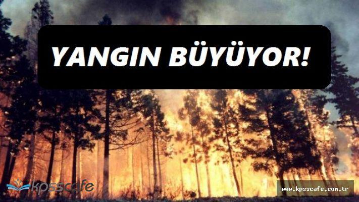Alanya'da Dün Başlayan Yangın, 24 Saattir Devam Ediyor! Ekipler Vatandaşlar ve Turistler Seferber Oldu