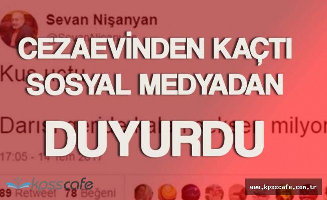 Yazar Sevan Nişanyan Cezaevinden Kaçtı! Firarını Twitter'dan Duyurdu