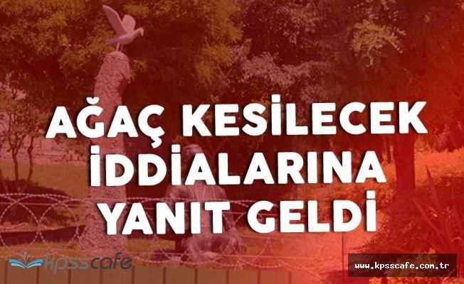 İstanbul Büyükşehir Belediyesi'nden 'Aşiyan Parkı' Açıklaması