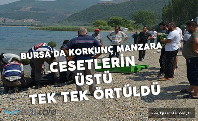 Bursa'dan Kahreden Görüntüler! 4'ü Birden Can Verdi