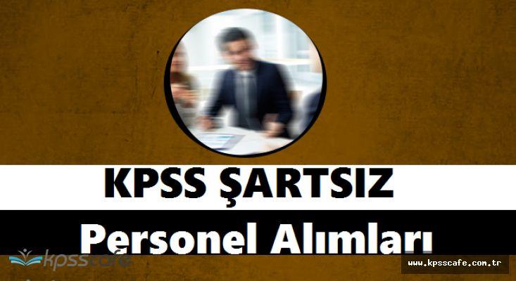 Valilik KPSS ŞARTSIZ Personel Alımlarında Bulunuyor! Süreç Başladı
