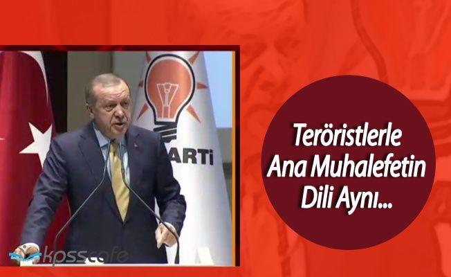 Cumhurbaşkanı Erdoğan ' Terör Örgütü Ne Diyorsa, Ana Muhalefet de Onu Diyor'