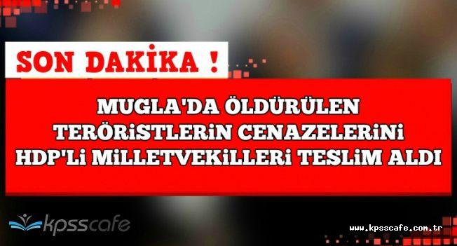 Muğla'da Öldürülen Teröristlerin Cenazelerini HDP'li Milletvekilleri Teslim Aldı