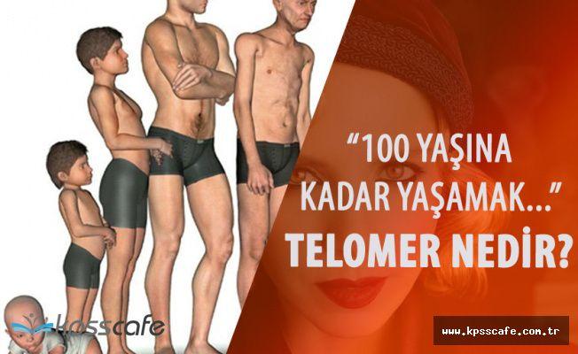 Sertep Erener'in Başlattığı Telomer Tedavisi Nedir? (Telomer Nedir?)