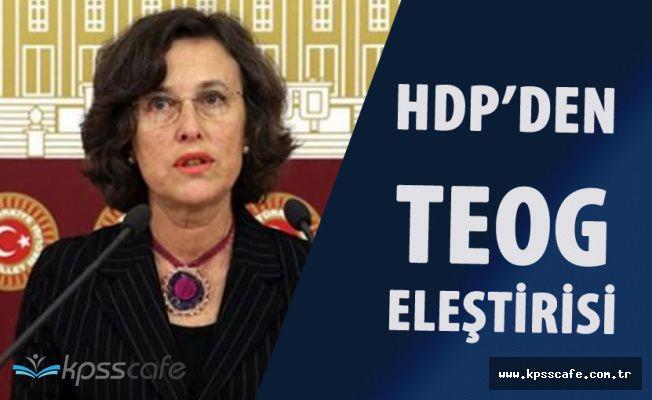 """HDP'den TEOG Sonrası Yeni Sisteme Eleştiri """" Yoksul Halk Kesimi İmam Hatip ve Meslek Liselerine Yönlenecek'"""