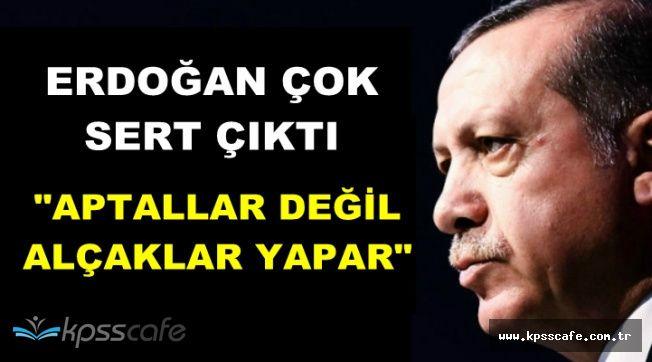 """Cumhurbaşkanı Erdoğan: """"Aptallar Değil, Alçaklar Yapar"""""""