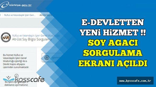 E-Devletten Yeni Hizmet: Soy Ağacı Sorgulama Ekranı Açıldı (Turkiye.gov.tr'de)