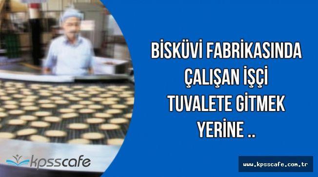 Bisküvi Fabrikasında Skandal Olay: Tuvalete Gitmeye Üşenen İşçi..