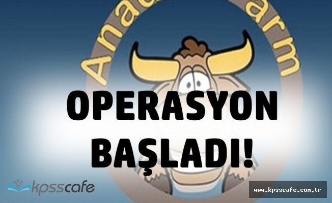 'Biz Çiftlik Bank Gibi Değiliz' Demişlerdi! Anadolu Farm'a Operasyon