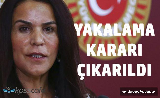Eski HDP Siirt Milletvekili Konca Hakkında Yakalama Kararı