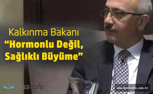 Kalkınma Bakanı Elvan: Türkiye Sağlıklı Büyüyor