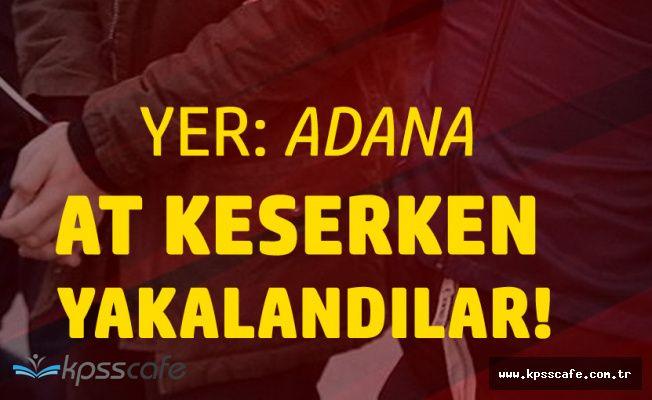 Adana'da At Keserken Yakalanan İki Gözaltına Alındı