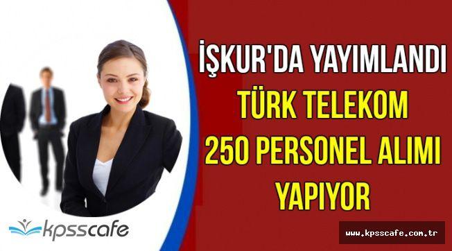 İŞKUR'da Yayımlandı: Türk Telekom 250 Personel Alımı Yapıyor