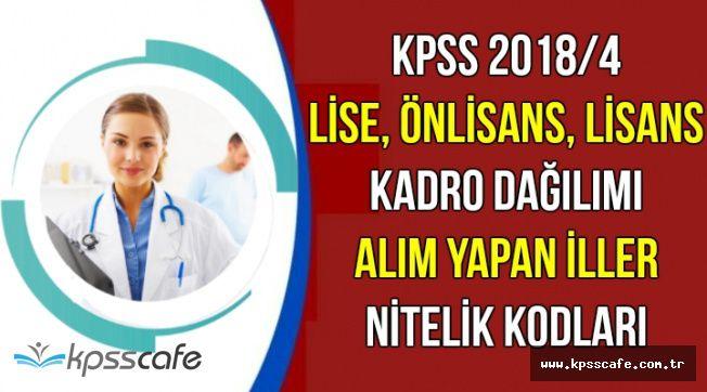 KPSS Lise , Önlisans ve Lisans Mezunu Kadro Dağılımı, Alım Yapan İller ve Nitelik Kodları