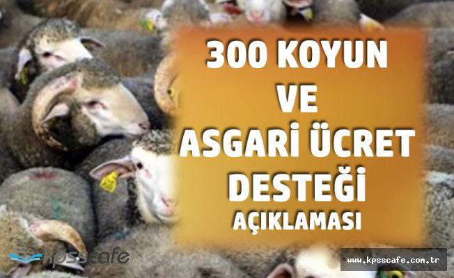 Tarım Bakanı'ndan 300 Koyun ve Asgari Ücret Projesi Açıklaması