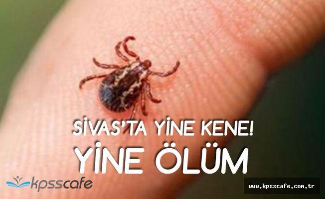 Sivas'ta Yine Kene, Yine Ölüm!