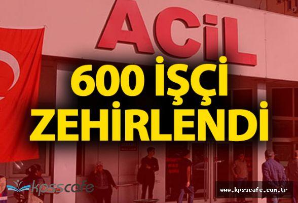 İzmir'de 600 İşçi Zehirlendi!..