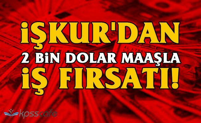 İŞKUR'dan 2 Bin Dolar Maaşla İş Fırsatı!