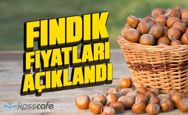 Erdoğan Fındık Fiyatlarını Açıkladı!