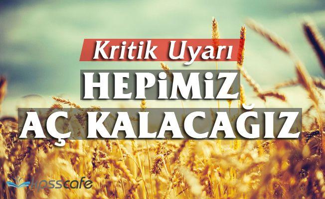 Eski Başkan Uyardı: Tarım Uzmanı Alınsın, Buğday Ekilsin, Hepimiz Aç Kalacağız!
