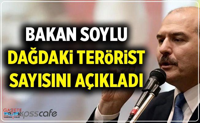Bakan Soylu Dağdaki Terörist Sayısını Açıkladı