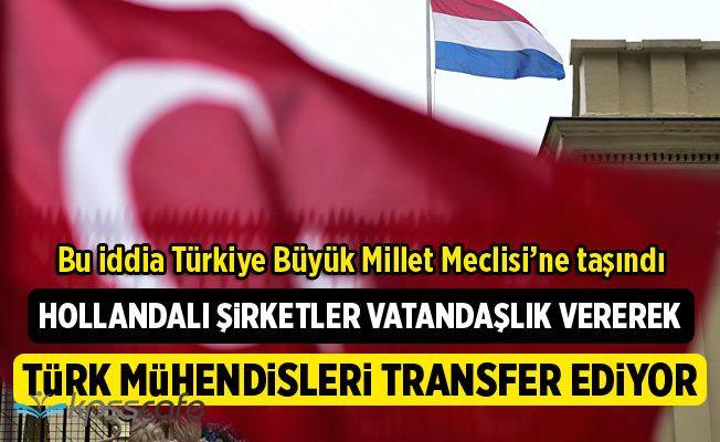 Hollandalı şirketler Vatandaşlık Vererek Türk mühendisleri transfer ediyor
