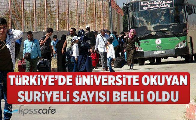 Türkiye'de Üniversite Okuyan Suriyeli Sayısı Belli Oldu!