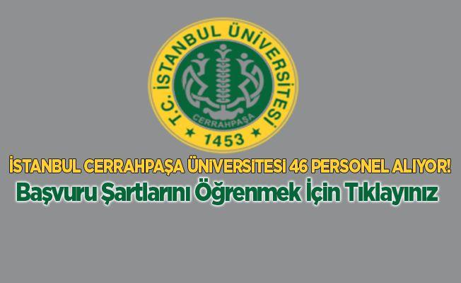 İstanbul Cerrahpaşa Üniversitesi 46 Personel Alıyor!