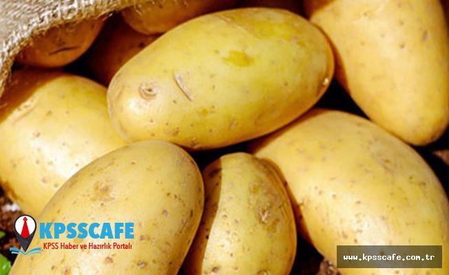 Hükümet Patates için Adım Attı! Bakın Fiyatlar Ne Kadar Olacak!