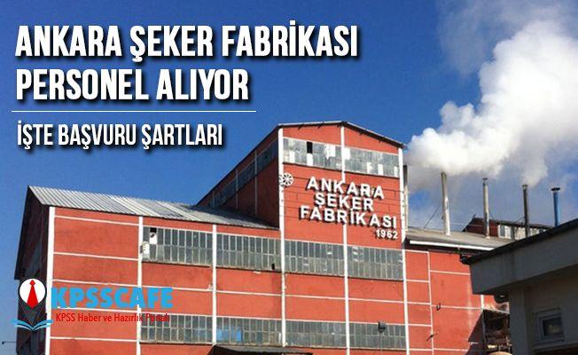 Ankara Şeker Fabrikası Personel Alıyor! İşte Başvuru Şartları!