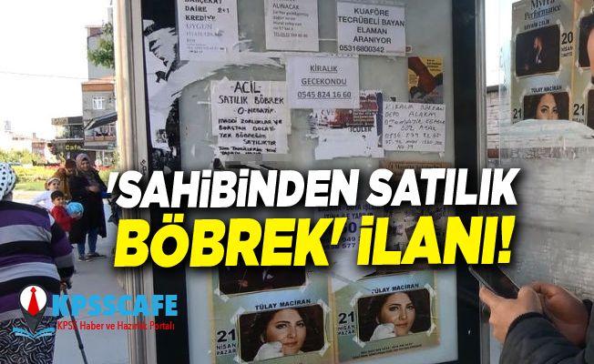 Krizin Acı Fotoğrafı:'Sahibinden Satılık Böbrek' ilanı!