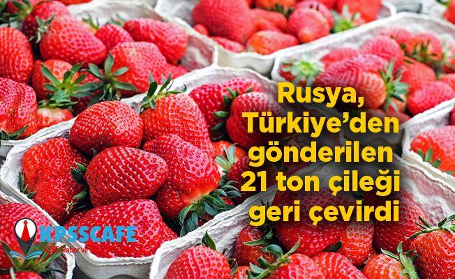 Rusya, Türkiye'den gönderilen 21 ton çileği geri çevirdi