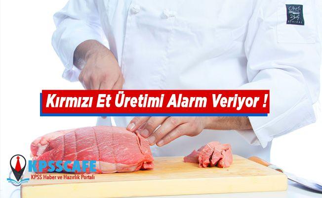 Kırmızı Et Üretimi Alarm Veriyor !