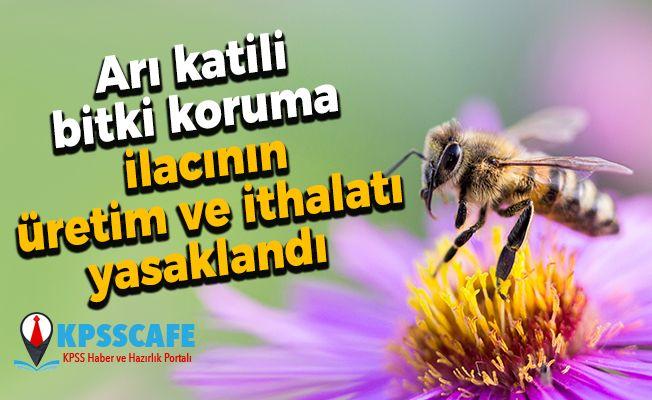 Arı katili bitki koruma ilacının üretim ve ithalatı yasaklandı