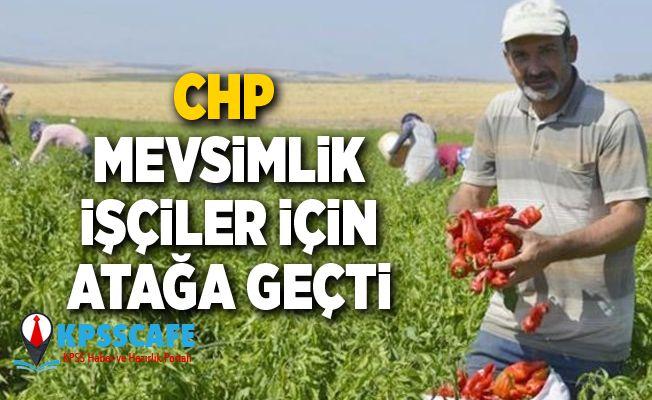CHP Mevsimlik İşçileri İçin Atağa Geçti