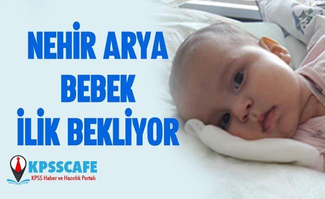 Fırat Üniversitesi Araştırma Hastanesi'nde Tedavi Gören Nehir Arya Bebek İlik Bekliyor