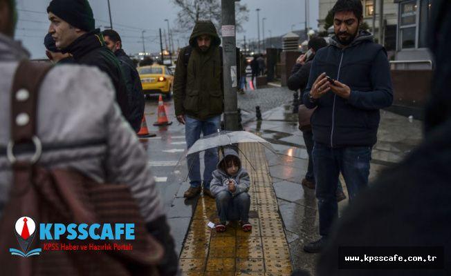 Filistinli göçmen: Buradaki ırkçılığı Gazze'de görmedim