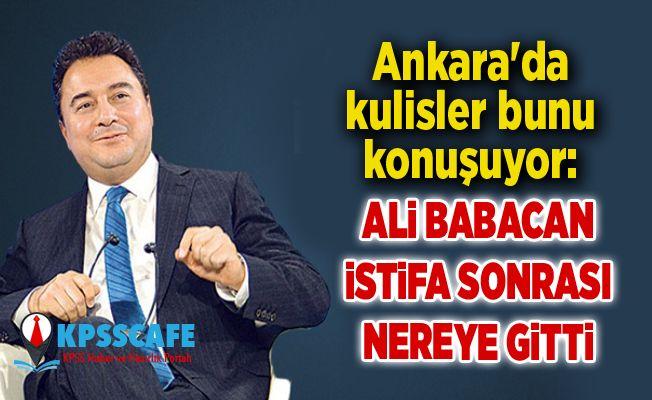 Ankara'da kulisler bunu konuşuyor: Ali Babacan istifa sonrası nereye gitti