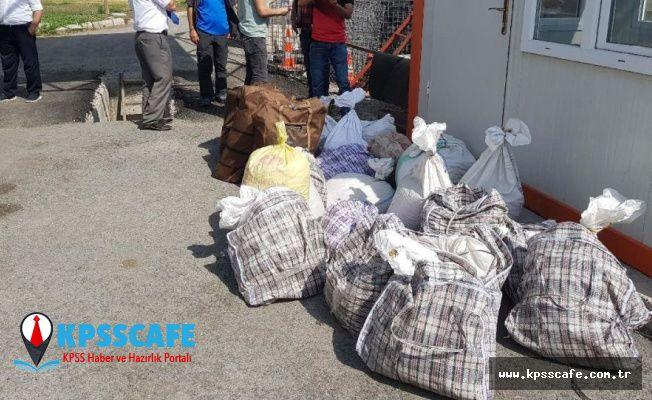 Kaçak salep soğanı toplamaya 601 bin 712 TL ceza