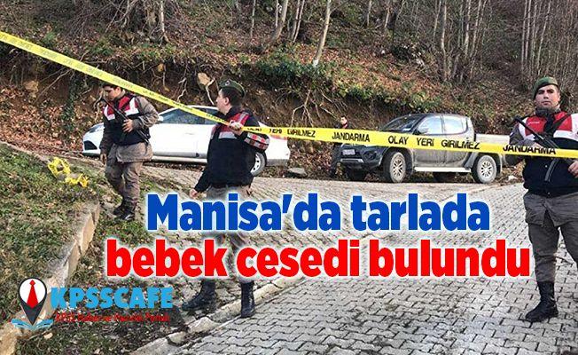Manisa'da tarlada bebek cesedi bulundu