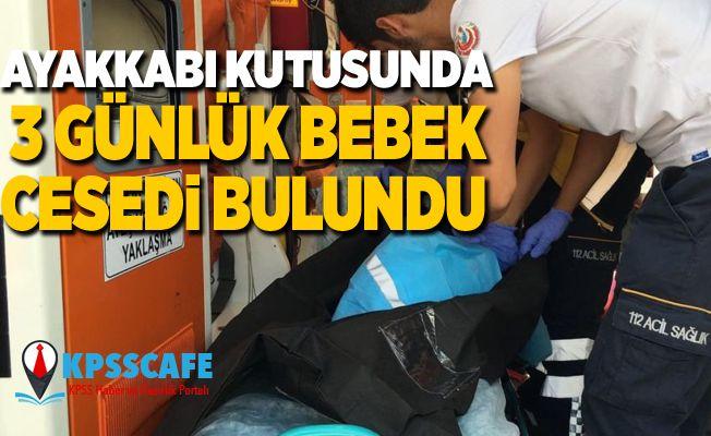 Ayakkabı kutusunda 3 günlük bebek cesedi bulundu