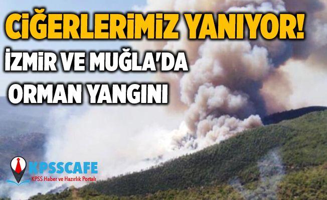 Ciğerlerimiz yanıyor! İzmir ve Muğla'da orman yangını