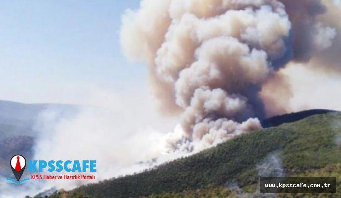 PKK orman yangınlarını üstlendi!