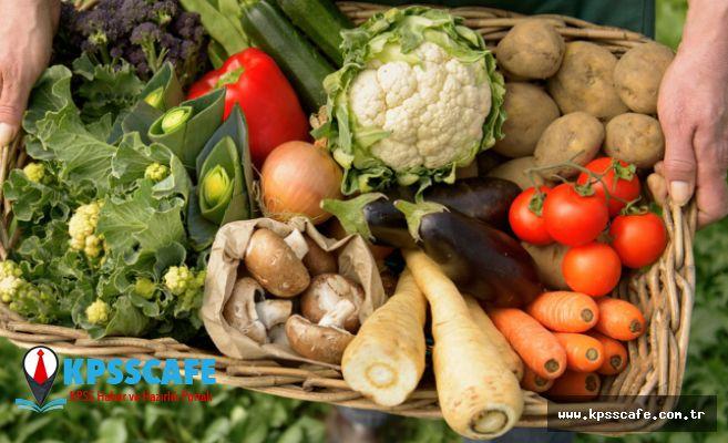 Sağlıklı Bir Yaşamın Sırrı Organik Beslenmede
