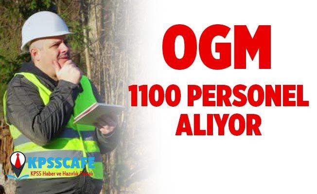 Orman Genel Müdürlüğü 1150 Personel Alıyor! İşte Başvuru Şartları!