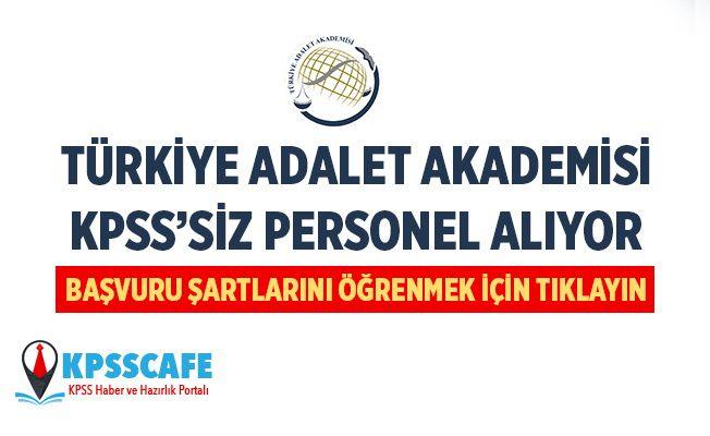 Türkiye Adalet Akademisi KPSS'siz Memur Alıyor! İşte Başvuru Şartları...